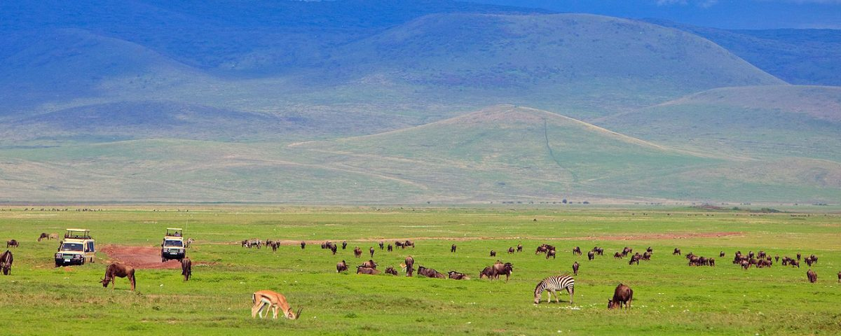 5 Interesting Facts About The Ngorongoro Crater Bespoke African