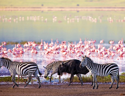 lake manyara accommodations