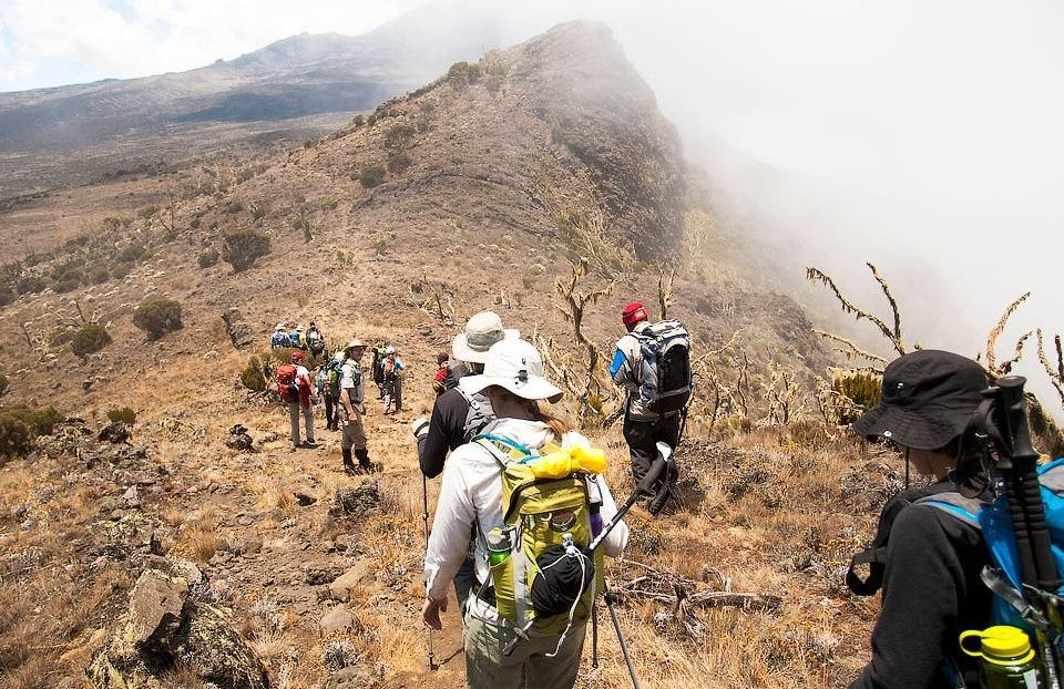 kilimanjaro-lemosho-route