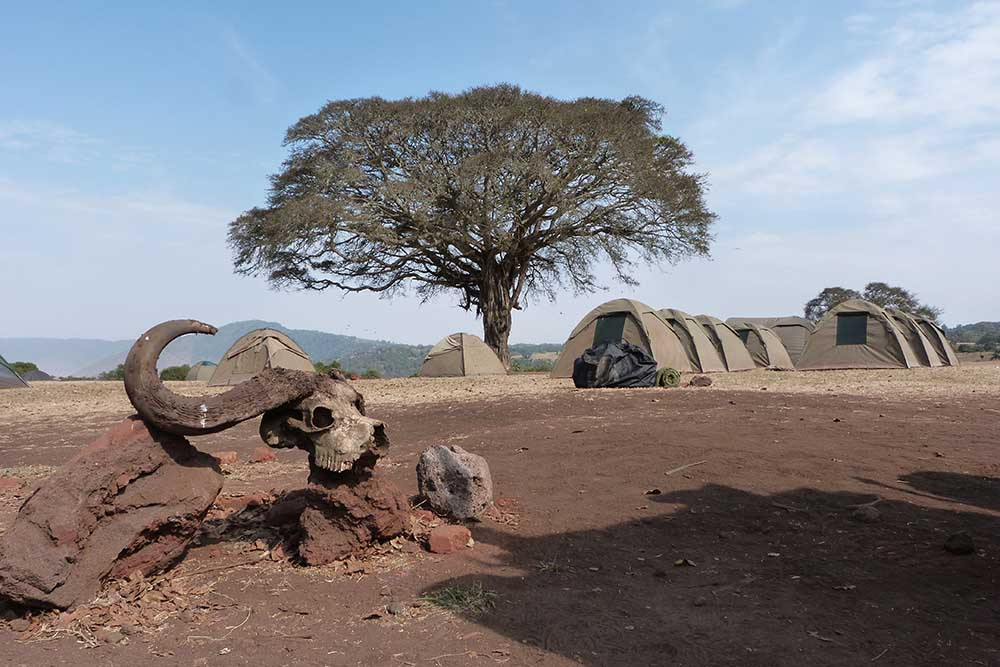 camping 4 (2)
